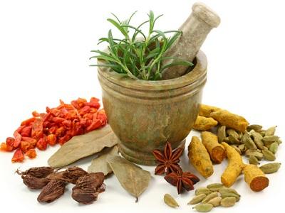 Image Result For Bisnis Herbal Menjanjikan